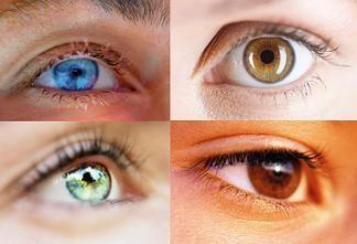 Genetika i vid